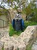 Ein Hod. To me, th owl looks professorial