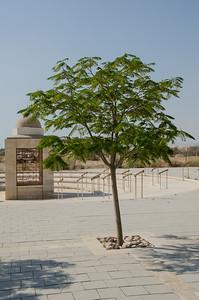 Quaser El-Yahud, Jordan River 02/10/2014   --- Foto: Jonny Isaksen