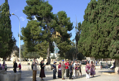 32-On the Temple Mount, our backs are to Al Aqsa; the Dome of the Rock is straight ahead.