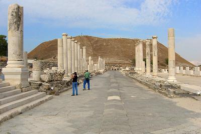 Palladius St and the Tel