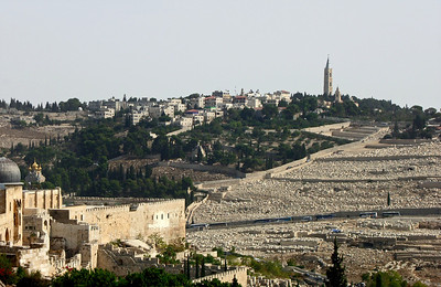 37-Al Aksa Mosque at left, Mount of Olives at right