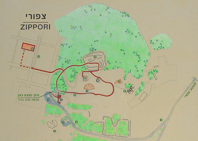 2-During the Roman period, Tzippori became a most important city and served as capital of Galilee. The name Tzippori may have come from the Hebrew for 'bird,' tsippor, perhaps because of the bird's-eye view the hilltop. This map of the Park is at the same scale as the next (satellite) image.