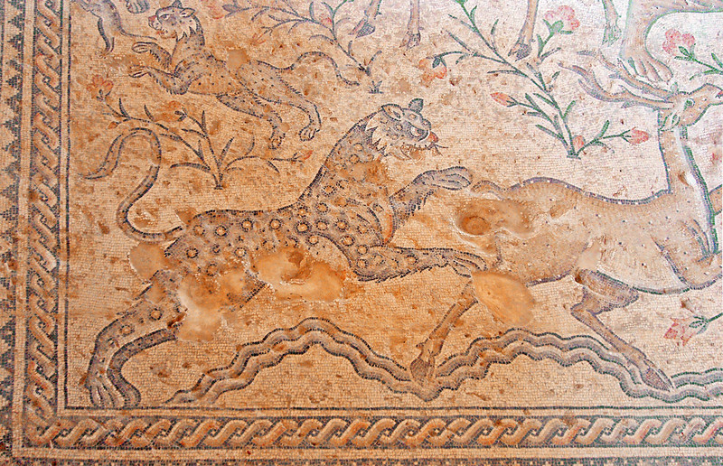 """5-A section of the """"Nile"""" mosaic showing strong animals attacking weaker ones, including a panther pouncing on a deer. The symbolism is unclear. There are no Jewish or Christian symbols in this building; all are pagan."""