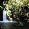 Hermon Stream (Banias) Nature Reserve 01/10/2011   --- Foto: Jonny Isaksen
