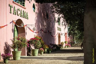 Viña & Bodegas Tacama