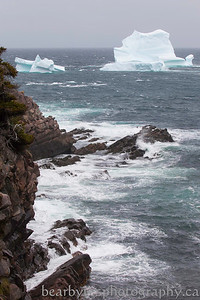 Typical day at Cape Spear, rain, wind, frost warnings and a berg off the coast