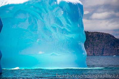 When the sun comes out the bergs light up.  yes this is how they really look