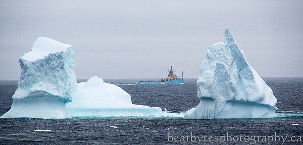 Service boat headed out to the oil rigs, lots of bergs out there