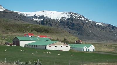 Iceland Landscapes-15