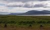 Iceland 2006, by Erik Kaffehr