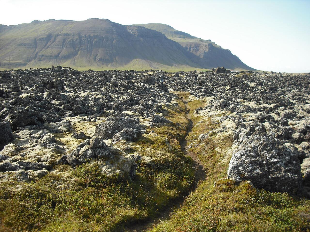 Look at that path those berserkers cut!  Good job, boys!