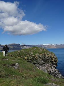 Icelandic landscape, Sandi