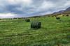 "Taken at Latitude/Longitude:65.825069/-18.242151. 3.18 km South-West Hjalteyri Northeast Iceland <a href=""http://www.geonames.org/maps/google_65.825069_-18.242151.html""> (Map link)</a>"