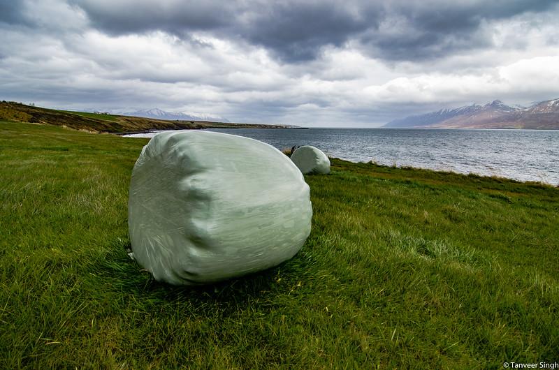 "Taken at Latitude/Longitude:65.910033/-18.288779. 4.90 km South-East Arskogssandur Northeast Iceland <a href=""http://www.geonames.org/maps/google_65.910033_-18.288779.html""> (Map link)</a>"