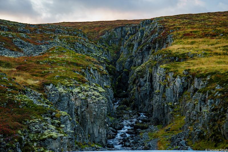 "Taken at Latitude/Longitude:65.809774/-22.521063. 33.13 km South-East Sudavik Westfjords Iceland <a href=""http://www.geonames.org/maps/google_65.809774_-22.521063.html""> (Map link)</a>"