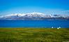 "Taken at Latitude/Longitude:65.909759/-18.290690. 4.87 km South-East Arskogssandur Northeast Iceland <a href=""http://www.geonames.org/maps/google_65.909759_-18.290690.html""> (Map link)</a>"