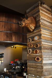 Bunk Bar Boar