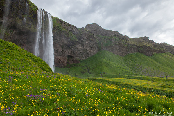 Field of Waterfall