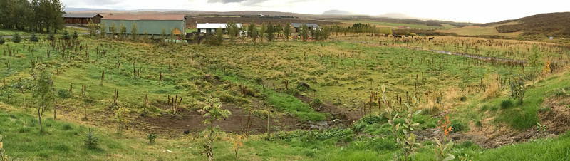 20170919 Iceland Photo Tour Tuesday iPhone IMG_4599 iPhone Pano