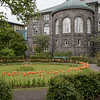 Garden with tulips still blooming on June 10, 2017, behind the Parliament Building in Reykjavik (constructed 1880-81).