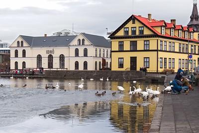 Lake Tjornin.