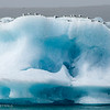 Gulls on an iceberg at the Glacier Lagoon.