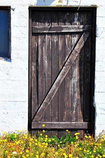 Vintage Door- Western Iceland