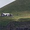 Island Sheep Farm, approaching Heimaey Island