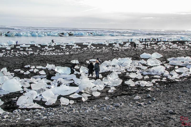 Jede Menge Eisberge am Strand von Jokulsarlon