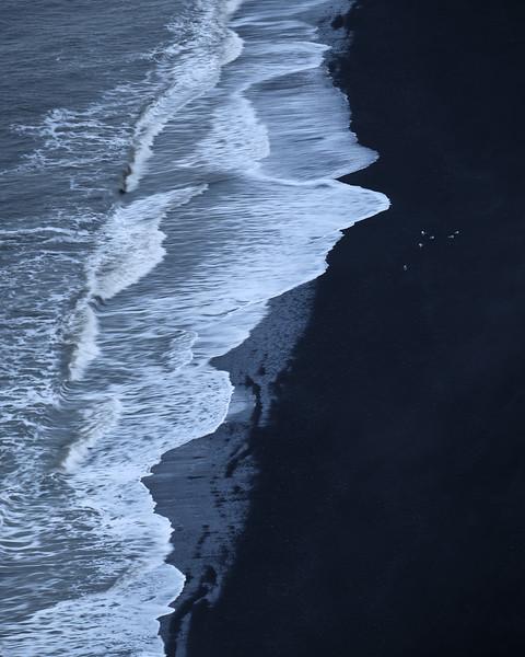 White birds on black beach