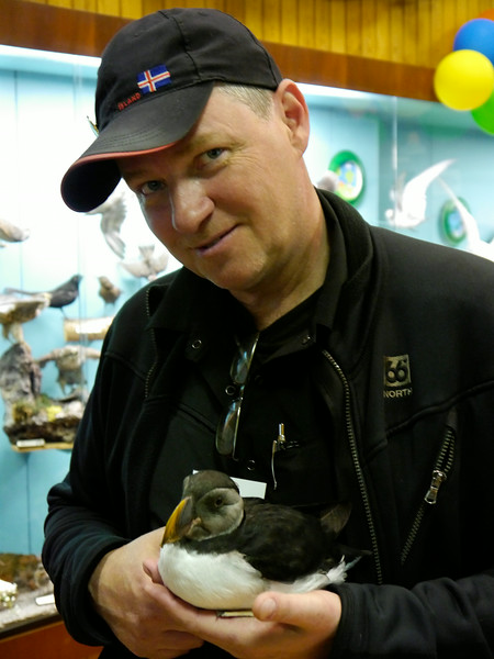 Iceland (Westman Island), June 2014, Overseas Adventure Travel (OAT) trip.<br /> The Natural History Museum.  Beggi, our intrepid OAT Guide, even got to hold the puffin.