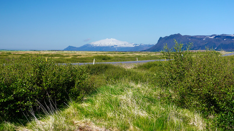 Iceland, June 2014, Overseas Adventure Travel (OAT) trip.<br /> Not sure, this may be a Forestry area near the Arnarstapi Lava Field on the Snaefellsnes peninsula.  The sign says something about a social forest and things are growing well.  Might be a government forestry area, I don't know.  It was very nice!
