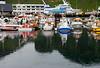 Iceland (Westman Island), June 2014, Overseas Adventure Travel (OAT) trip.<br /> Part of the harbor.