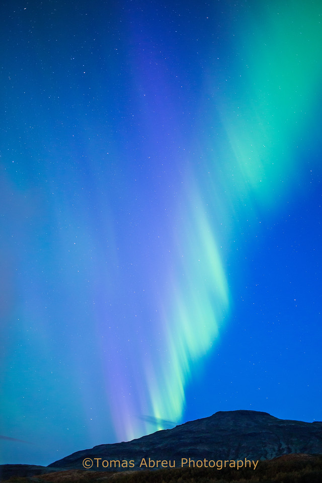 Aurora Borealis, Geyser, Iceland