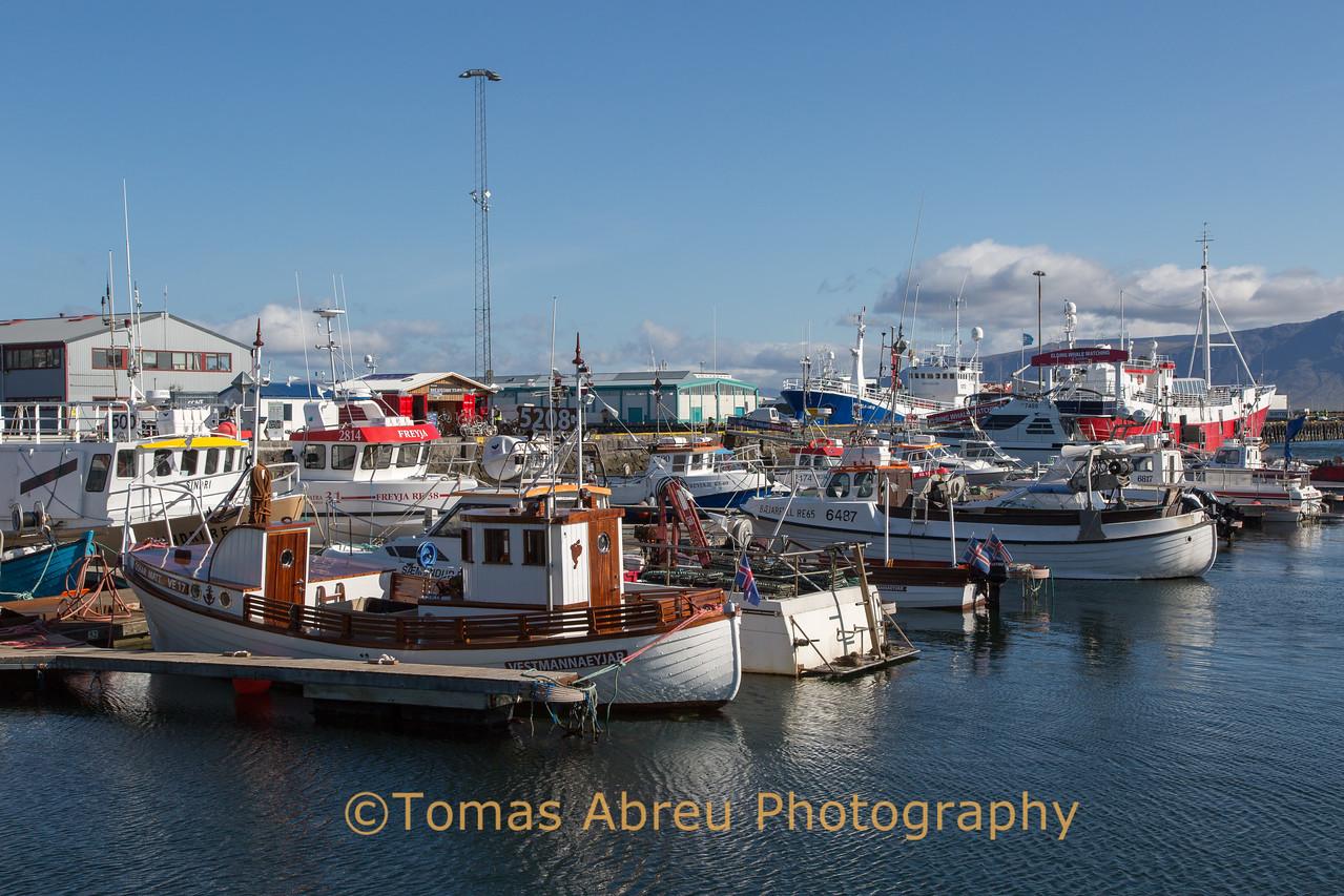 Old Harbor - Reykjavik