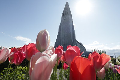 The bold and beautiful Hallgrimskirkja Church towers over the Reykjavik skyline