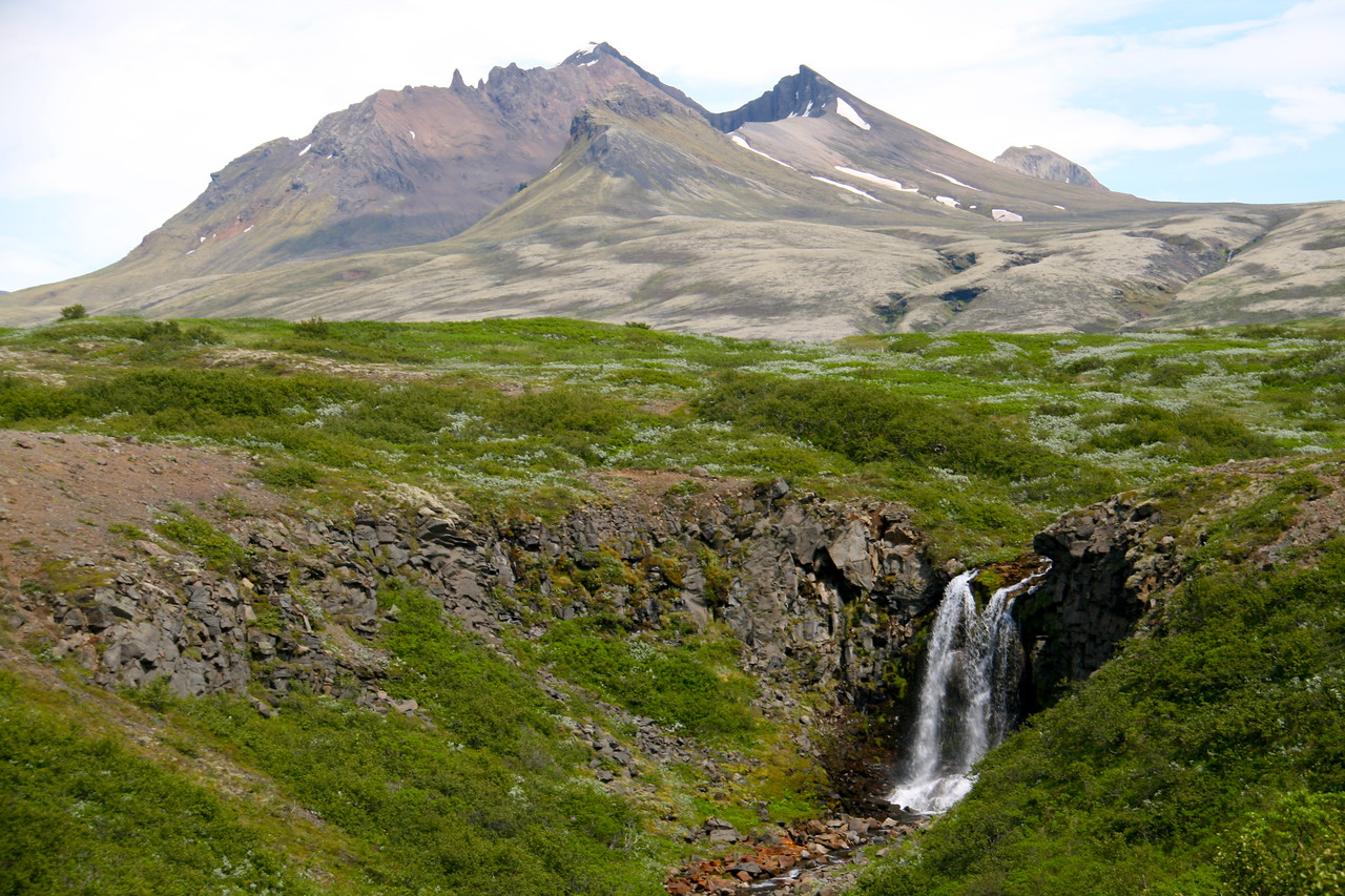 Common site in Iceland. Waterfalls, no trees.