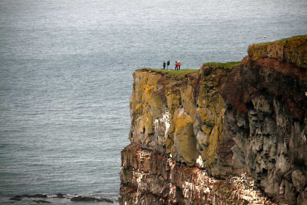 Don't fall! Latrabarg cliffs, where we went to see the puffins.