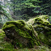 Spirit of moss and rocks