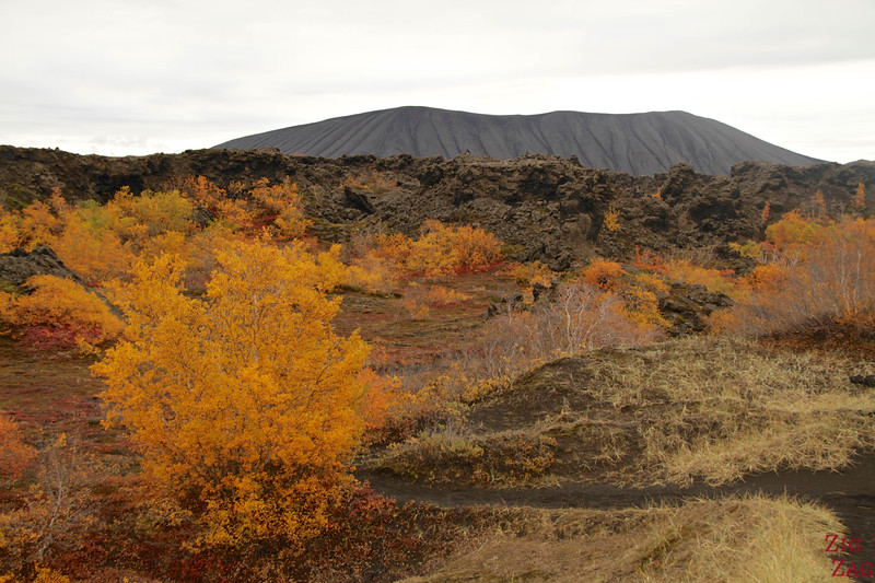 Dimmuborgir paths, Iceland photo 2