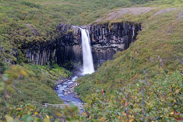 Cascade ed Svartifoss Skaftafell