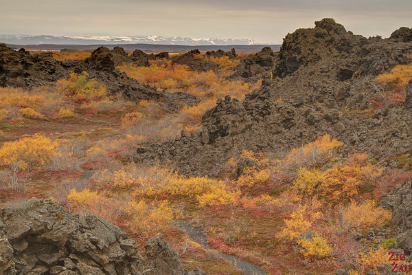 Dimmuborgir paths, Iceland photo 3
