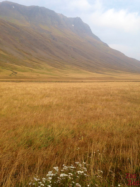 Oxnadalur valley, Iceland 2