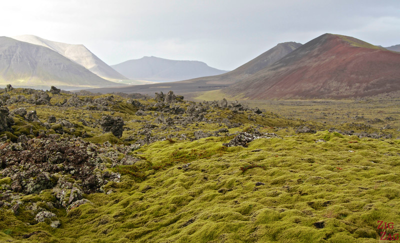 Berserkjahraun lava field, Iceland photo 2