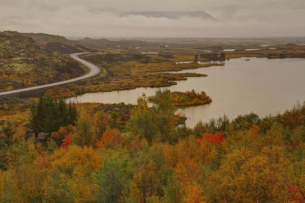 Hofdi Park, Myvatn, Iceland Photo 5