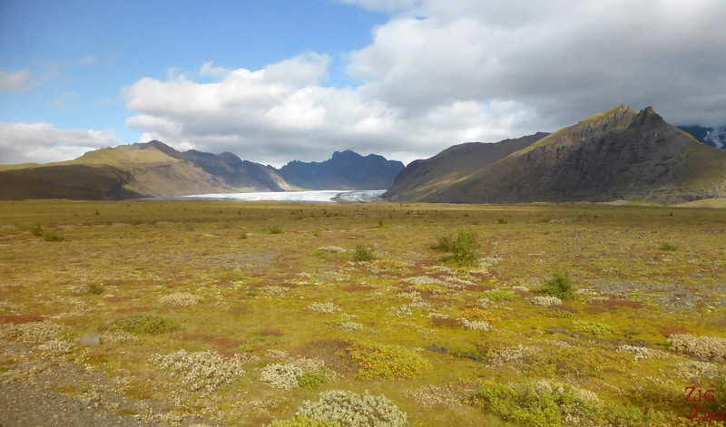 Gletscherzunge in Skaftafell