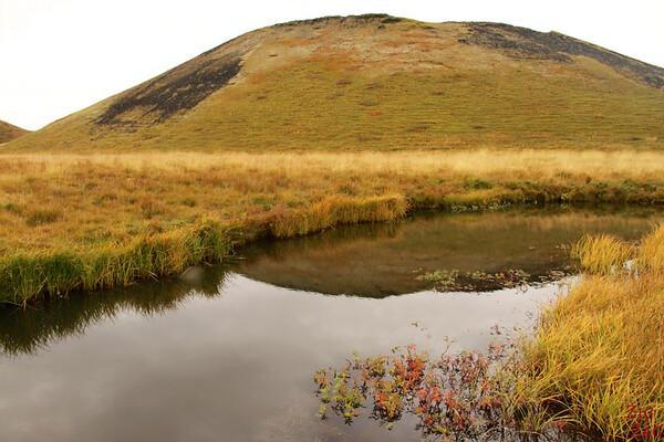 Lake Myvatn pseudo-craters, Iceland Photo 8