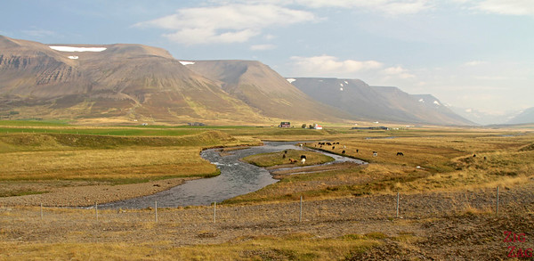 Driving around Iceland  Ring Road Landscapes 1