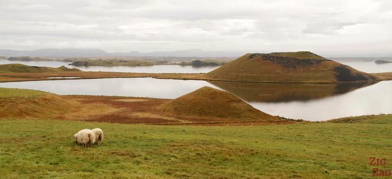 Lac Myvatn Pseudo-cratères Skutustadir Islande - Skutustagigar 4