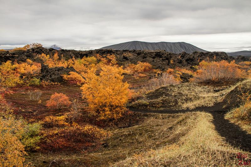 Champs de lave de Dimmuborgir Islande - Lac Myvatn 2